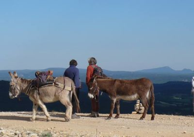 Balade-avec-des-anes-sur-Luberon-crete