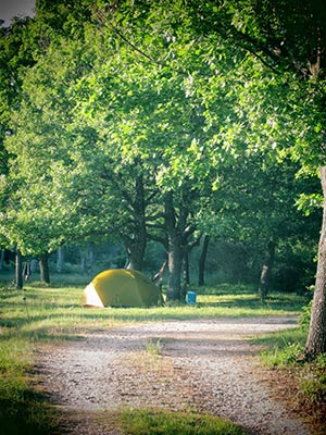 tente-camping-a-la-ferme-a-cucuron
