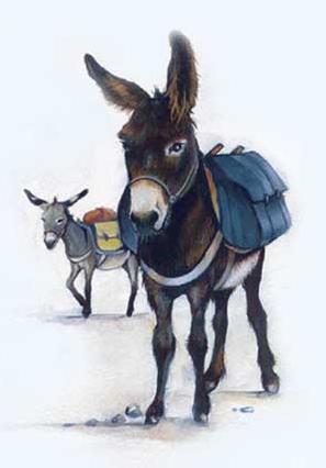 livret En Route avec votre âne - page Balade